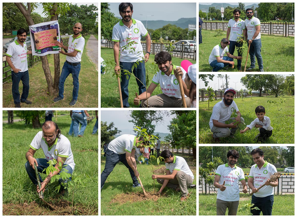 Zong 4G Tree Plantation