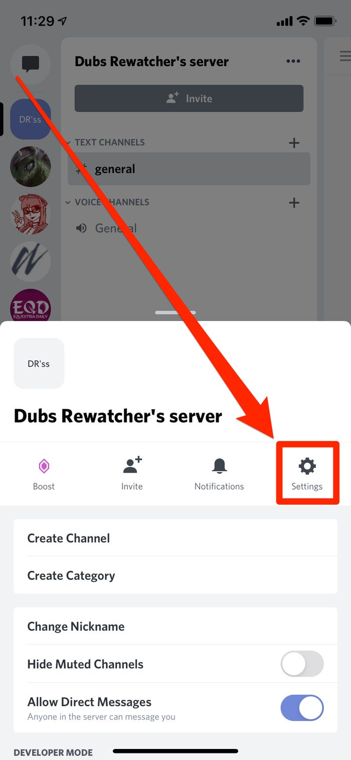 You can tap the gear icon to open your server's settings.
